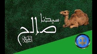 هل تعلم | قصة صالح عليه السىلام - ومعجزة الناقة -  قصص الانبياء - ح 5