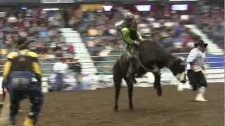 Chanse Cutler 72.5 points. Junior Steer Riding #CCAFinals '12 Round One
