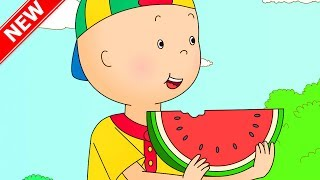 ★NEW★ CAILLOU AT THE PIC NIC | Cartoons for kids | Funny Animated Cartoons for Children