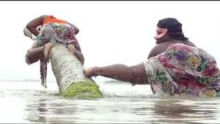 84 Snura   Chura Dance   Tanzania women Twerking Official Video   YouTube