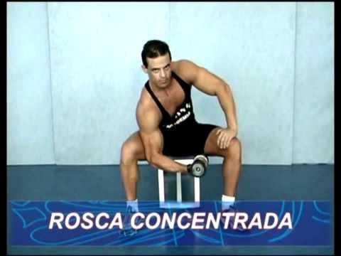 Técnica de execução de exercícios Biceps