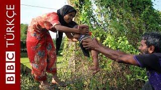 Arakanlı Müslümanlar: Bizi katlediyorlar - BBC TÜRKÇE