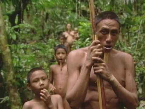 Xxx Mp4 Aislados Tribu Zo é Parte 1 Isolated The Zo é Tribe Part 1 3gp Sex