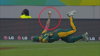 Best Catches In Cricket History - HD