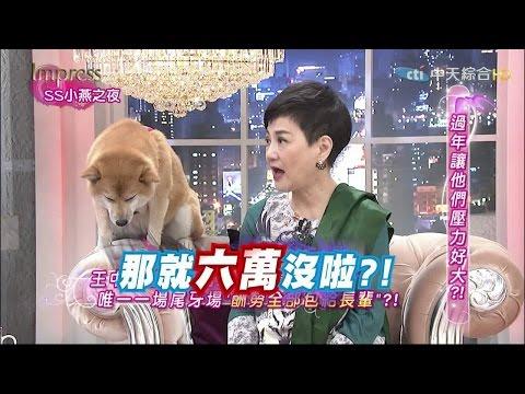 2015.02.12SS小燕之夜完整版 他們最怕節日竟然是過年?