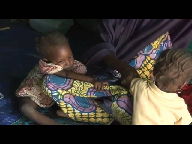 Des milliers de réfugiés en souffrance au Niger à cause des violences de Boko Haram