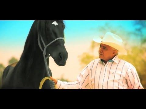 El caballo de oro Reynaldo Armas Nominado a los Latin Grammy como Mejor Álbum Folclórico ✨
