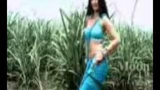Diva hindi.3gp