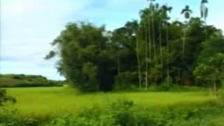 Tumar Amar Priyo Bangladesh By Monir Khan   Album   Tumar Amar Priyo Bangladesh   Desher Gaan