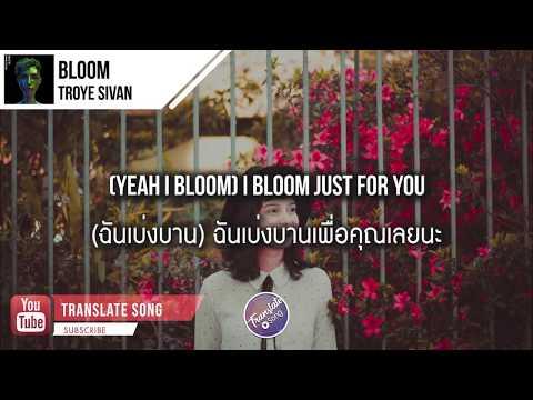 แปลเพลง Bloom - Troye Sivan