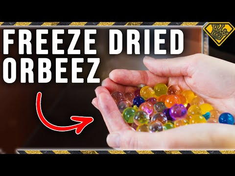 Can You Extract The Water From Orbeez