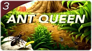 Ant Queen - AUMENTANDO A TROPA E O TERRITÓRIO! #3 (PT-BR)