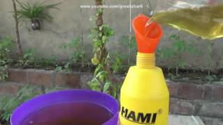 How to Make Pesticide From Neem Leaves | Pesticide for Plants | Start to End (Urdu/hindi)