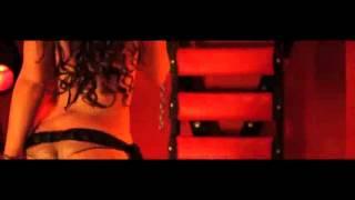 LIL WAYNE   She Will Music Video