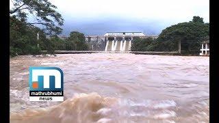 Floods At Palakkad Recede  Mathrubhumi News