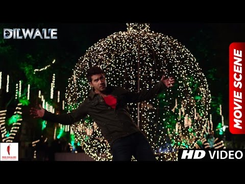 Xxx Mp4 Veer Proposes In SRK Style Dilwale Scenes Shah Rukh Khan Varun Dhawan Kajol Kriti Sanon 3gp Sex
