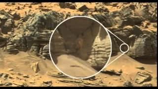 """Robot thám hiểm của NASA phát hiện ra """"người ngoài hành tinh""""?"""