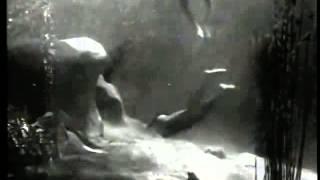 TARZAN AND JANE / Banned swimming scene