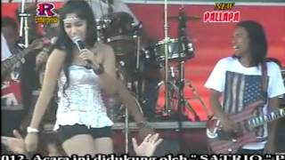 PALLAPA -Perawan Kalimantan by harrytampan 2013.FLV dangdut koplo