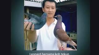Sekilas Info sang legend MB LEONARD