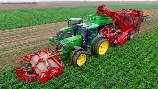 Harvesting Celeriac | Grimme Rootster 604 & John Deere 6150R | Knolselderij rooien C Breure en Zn