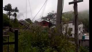Fagu [near Kufri] Himachal Pradesh June 2013