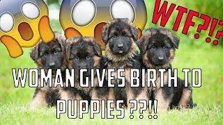 Woman Gives Birth to Puppies After Having Sex With Family Dog?