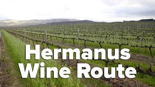 The Hermanus Wine Route - South Africa