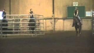 Mousse Jr Horse SEC09