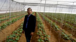 Smart Net House  Agriculture in India