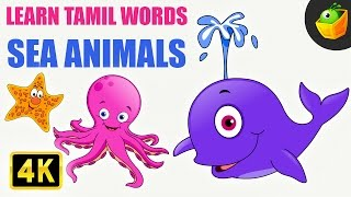 Sea Animals | Learn Tamil Words (Spelling) | Magicbox Animation | Tamil Rhymes for Kids