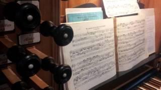 Orgelmusik mit F  Fischer, Zgr 002