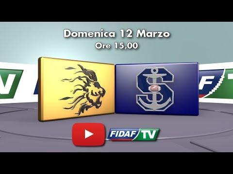 Lions Bergamo vs Seamen Milano