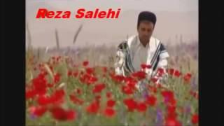 ترانه سوار با صدای رضا صالحی