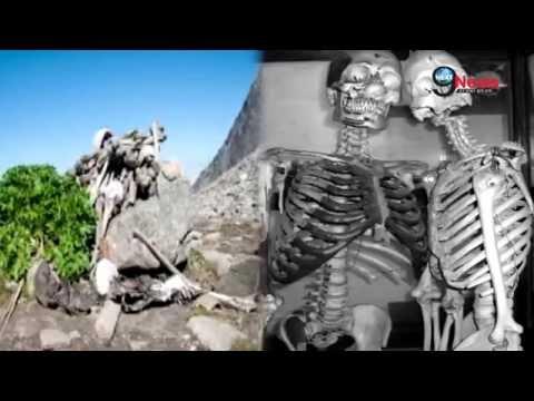 Xxx Mp4 सत्संग आश्रम के कुएं से खुदाई के दौरान मिले मानव कंकाल Radha Soami Satsang Beas Human Skeleton 3gp Sex