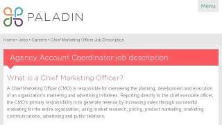 Example Of A Chief Marketing Officer Job Description