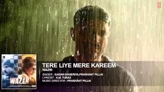 'TERE LIYE' Full Song (Audio) - Wazir - Farhan Akhtar, Amitabh Bachchan, Aditi Rao Hydar