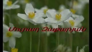 HOGEVOR ERGER - MURAD ZAKARYAN - GARUN HRASHALI