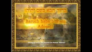 Baruch haba b