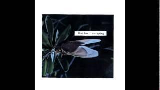 Mitski - First Love / Late Spring