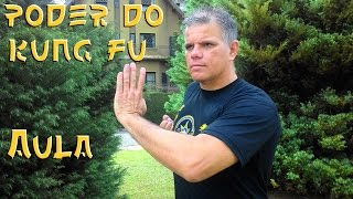 TÉCNICAS DE KUNG FU Wing Chun Defesa de Soco, Aula 03 #ArtesMarciais