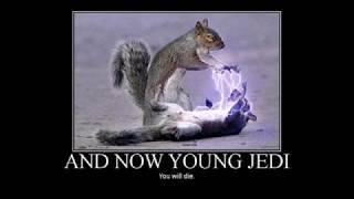 Jokes for Star Wars Fans!