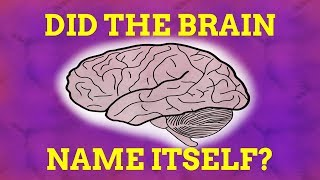 How Did The Brain Name Itself?