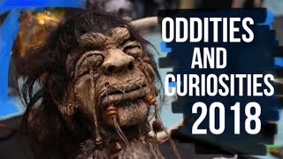 The Oddities and Curiosities Expo 2018 in Chicago | I Can't Believe What We Just Experienced