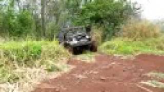 4WD in jungle - 1