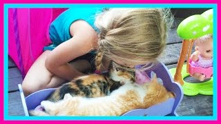 Baby Kitten Sleepover on The Pirate Ship Playground Park for Kids W/ Play Doh Girl & Fun Factory