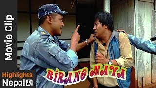 Krishna Ko Khoji -  New Nepali Movie BIRANO MAYA Scene 2016/2073