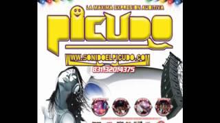 musica electronica house dance trance 2012 mix dj el picudo.mp3.