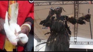 Ushirikina: Sholo Mwamba arusha njiwa wawili Tamasha la Muziki Mnene Dar