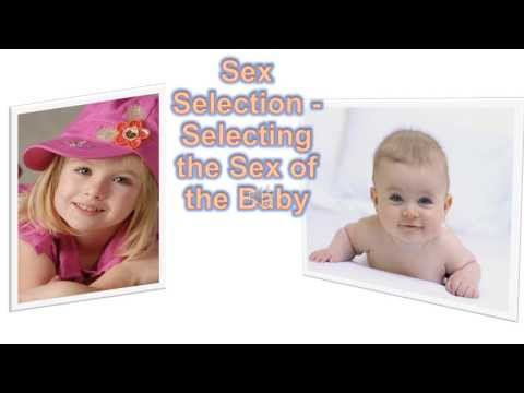 Xxx Mp4 Sex Selection Selecting The Sex Of The Baby 3gp Sex